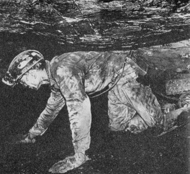 As othe forms of energy became available, the market for coal dried up. Wadges of Nova Scotia miners were cut by a third-and for dirty and dangerous work that already paid only about 25 to 30 cents per hour. Boys as young as 10 worked underground to help support their families.