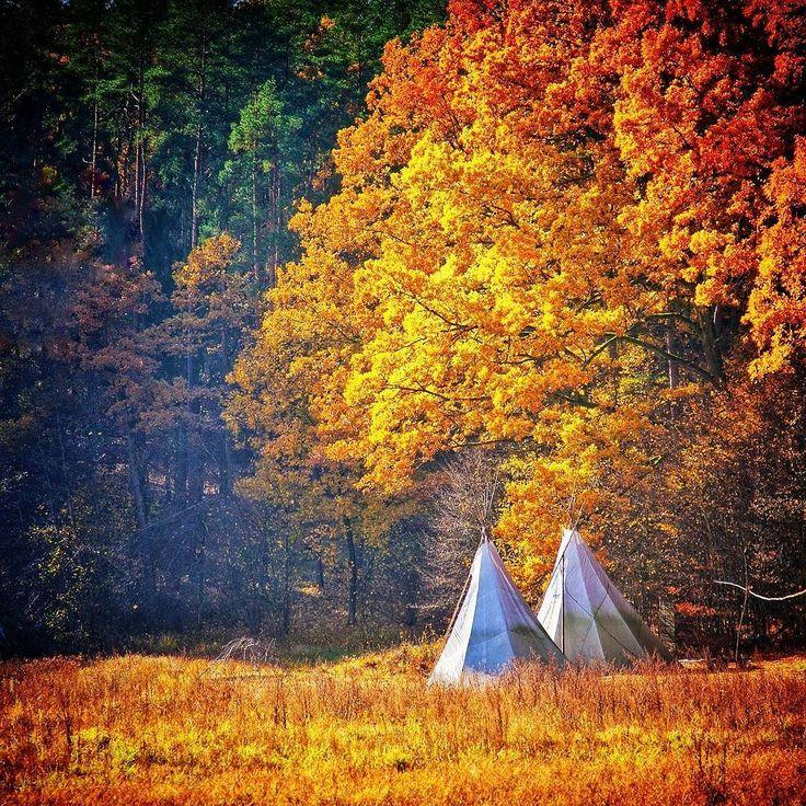 Wędrując po Pojezierzu Brodnickim można trafić na miejsca takie jak to. W środku lasu parę kilometrów od Górzna stoją sobie takie wigwamy :) Co tam robią? Nie wiadomo ale jest to tylko jedna z wielu tajemnic tej okolicy.  #jesień #jesien #fall #autumn #leaves #falltime #season #seasons #instafall #instagood  #instaautumn #photooftheday #leaf  #colorful #orange #red #autumnweather #fallweather #nature #Polska #Poland #pojezierzebrodnickie #kujawskopomorskie #lubietubyc #lubiepolske #Brodnica