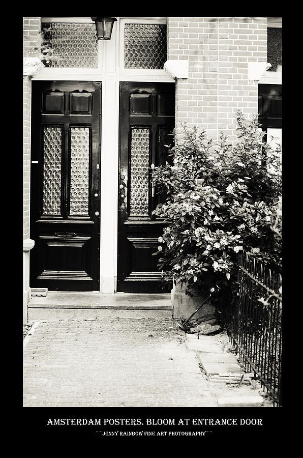 Amsterdam Posters. Bloom At Entrance Door by Jenny Rainbow.  Big collection of Amsterdam posters with black framing with concept of city architecture and street photos. This collection offering the same style for all the images and perfectly suits for wall decor of the bars and restaurants or minimalistic home interiors.