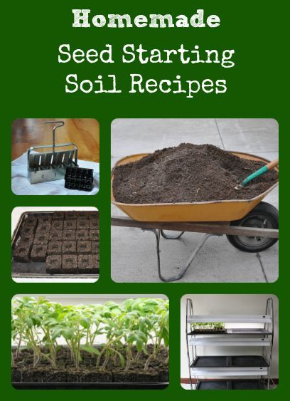 Homemade Soil Mix For Seed Starting (Better Hens And Gardens). Container  GardeningVegetable ...