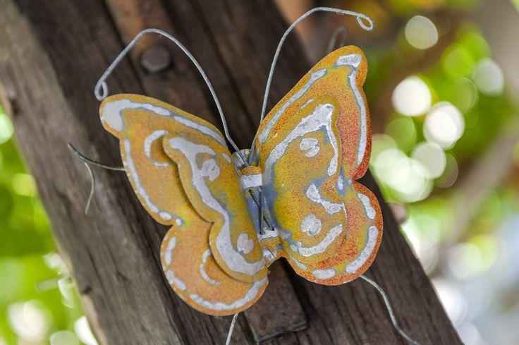 Avli's Butterfly Rethymno - Crete - Greece
