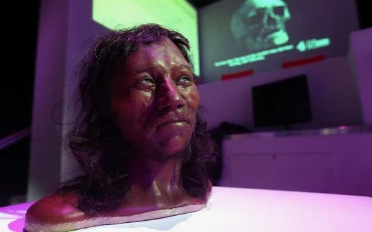 The first Britons were black, Natural History Museum DNA study reveals