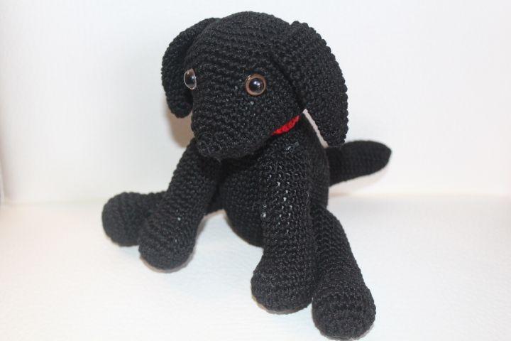 Cane Labrador dolcissimo tutto nero. Schema free.