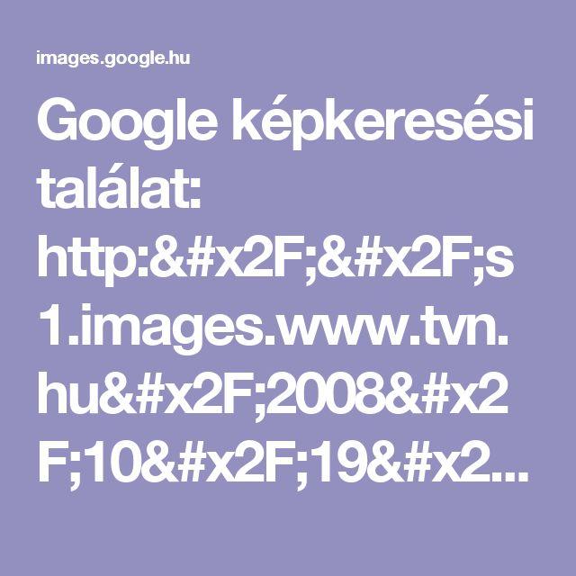 Google képkeresési találat: http://s1.images.www.tvn.hu/2008/10/19/00/46/www.tvn.hu_335350bd86830da4919d30f261eea01a.gif