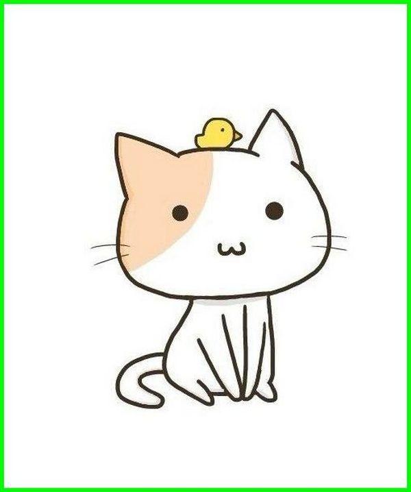 Wallpaper Wa Lucu Dan Imut Kucing