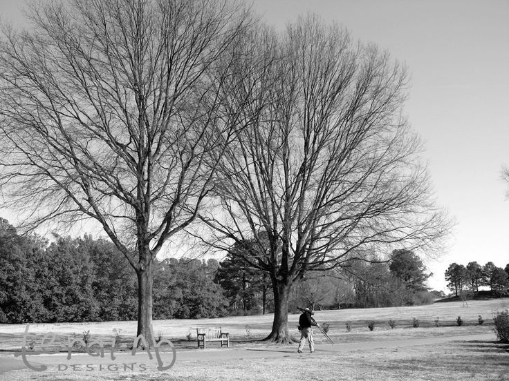 A personal favorite from my Etsy shop https://www.etsy.com/listing/201810145/photographer-walking-in-the-parkblack