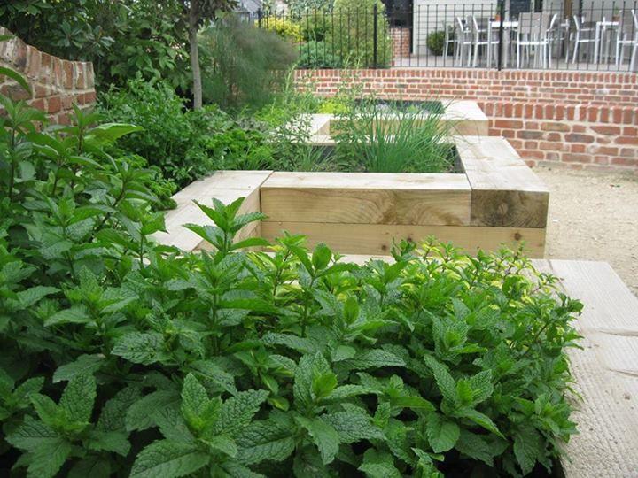 Garden design jardin pinterest jardinage plantes et for Jardin et jardinage