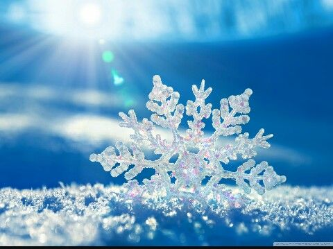 Snow is magic!