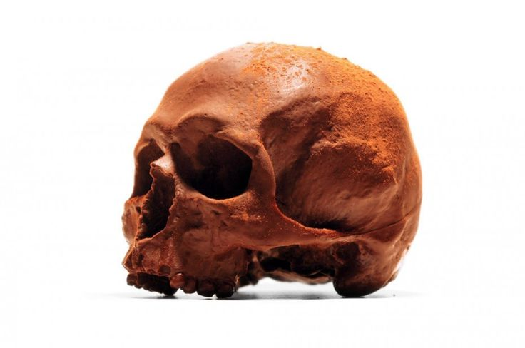 Anatomically-accurate, life-sized chocolate skulls