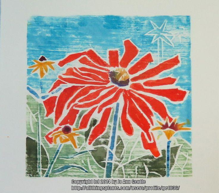 ge1836's blog: Return to Whiteline Printmaking (All Things Plants)