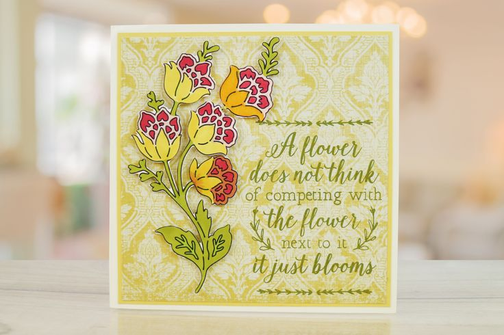 Rare Earth Scribbles brings a wonderful new range of stamps and complimentary masks to create cards for all occasions