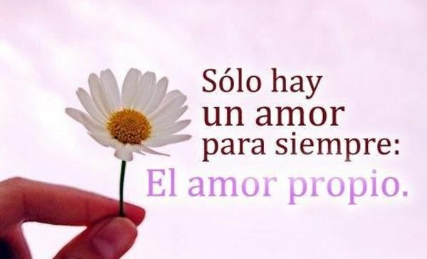 Imagenes Bonitas Para Celular Con Frases de Amor!