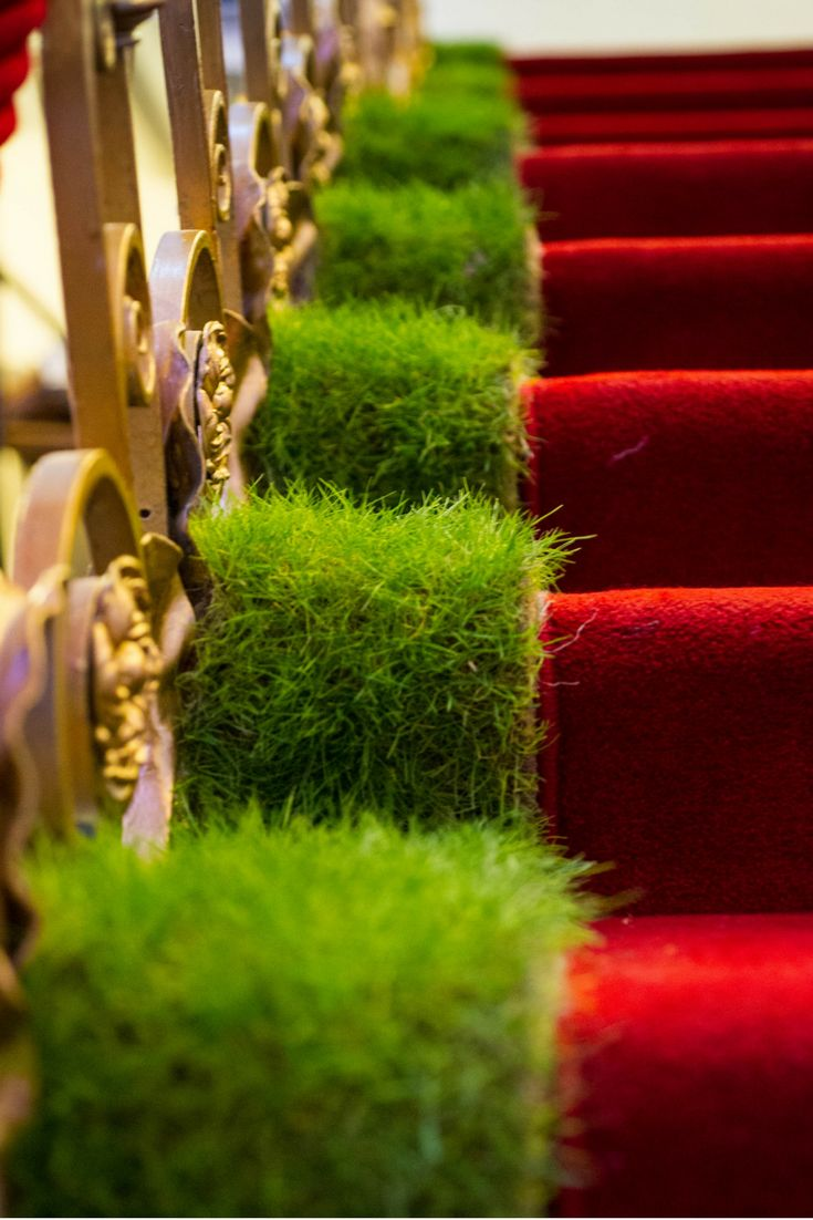 Bringing the outdoors indoors with our real grass staircase. Love the vibrant green next to the bright red carpet. Guests loved the dressing of the venue and it smelt incredible.