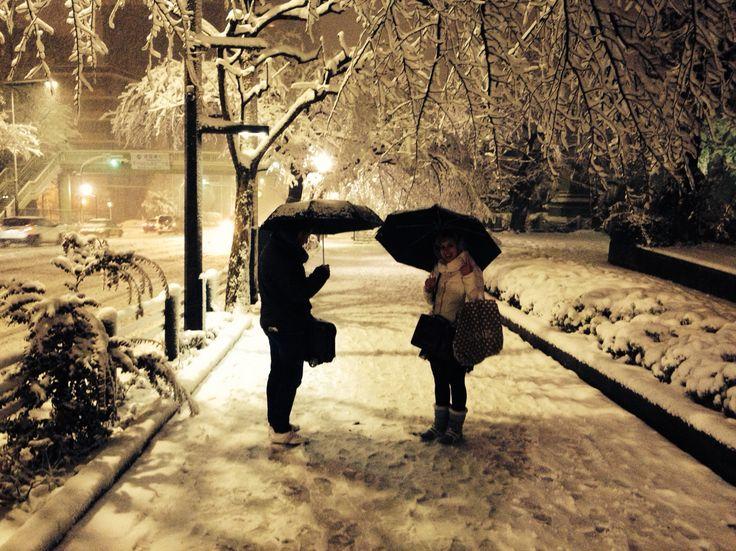 Snow in Tokio!!!