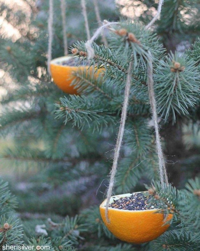 Vogels voeren in de winter. Een halve sinasappel uithollen en een touwtje er aan maken. Te vullen met zaden in vet of gewoon los voer