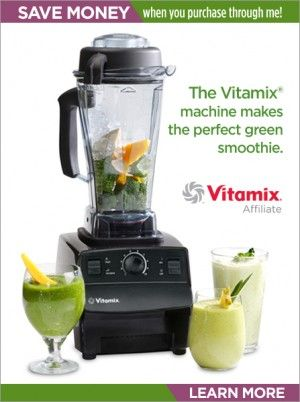Blender Dude's Vitamix recipe index page, smoothies, soups, sauces, dips, desserts etc.