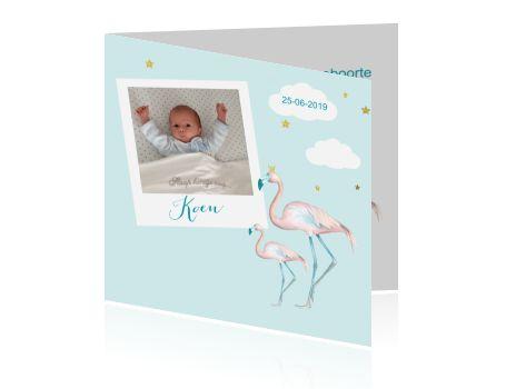 Geboortekaartje jongen flamingo foto