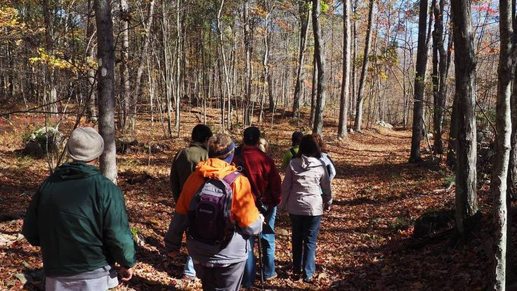 On October 23, 2016 Ashford Conservation Commission led a guided hike on the newly white blazed Langhammer trail on Ashford town land.