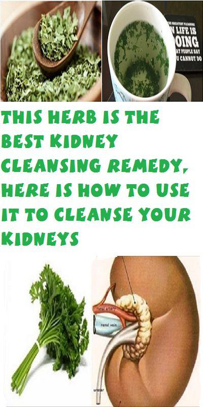 25 best ideas about kidney cleanse on pinterest kidney