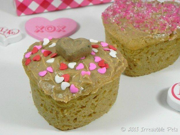 25 Best ♡ Valentine Cats ♡ Images On Pinterest