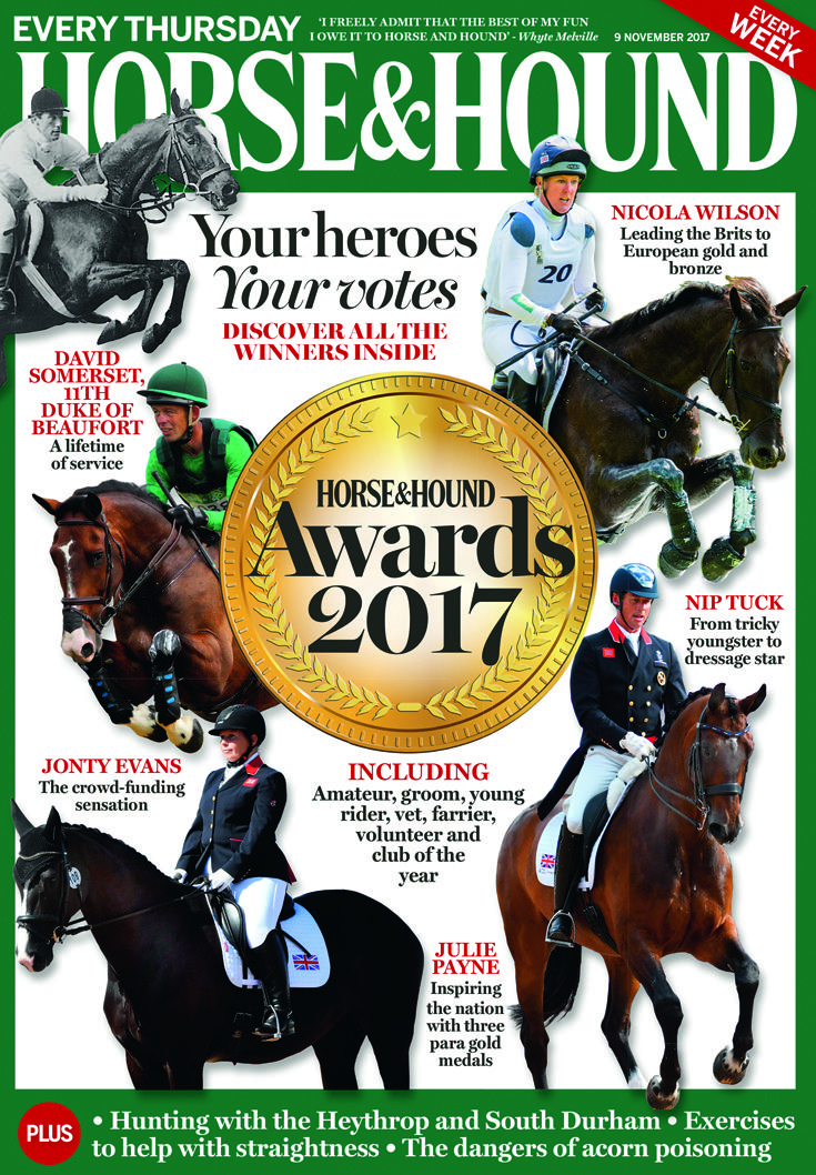 Meet all the winners from the H&H Awards in this week's issue of Horse & Hound (9 November).