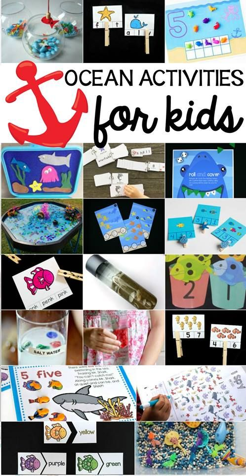 Check out these fantastic ocean-themed educational activities for kids in early elementary school! You'll find activities for reading, science experiments, and early math practice in this round up of 20 ocean activities for kids.