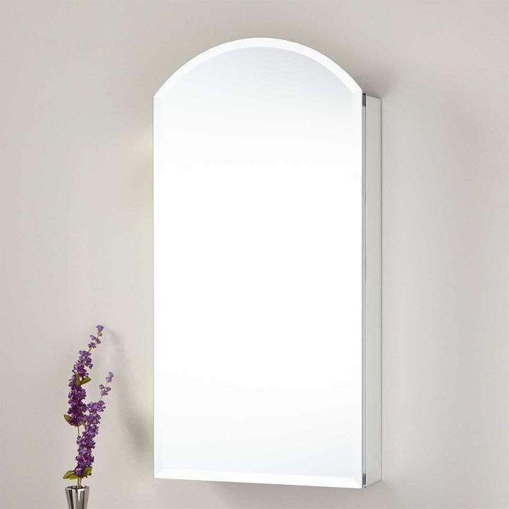 Create Photo Gallery For Website Acey Surface Mount Frameless Medicine Cabinet with Mirror