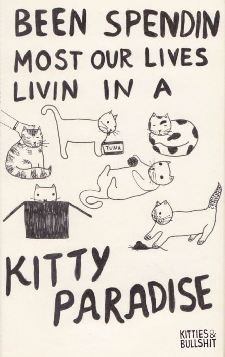 17 Classic Song Lyrics Significantly Improved By Cats