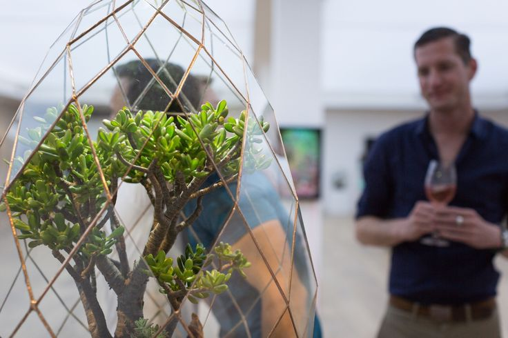 Lady Garden | Exhibition Opening   10.09. 2017   Glass Terrarium from Denny Mo on display at the #CavalliEstate gallery