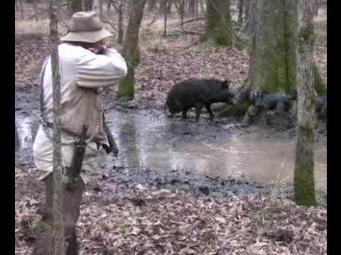 Ultimate Hog Hunting! Wild Hog Hunting! Wild Boar Hunting! Hog Hunting