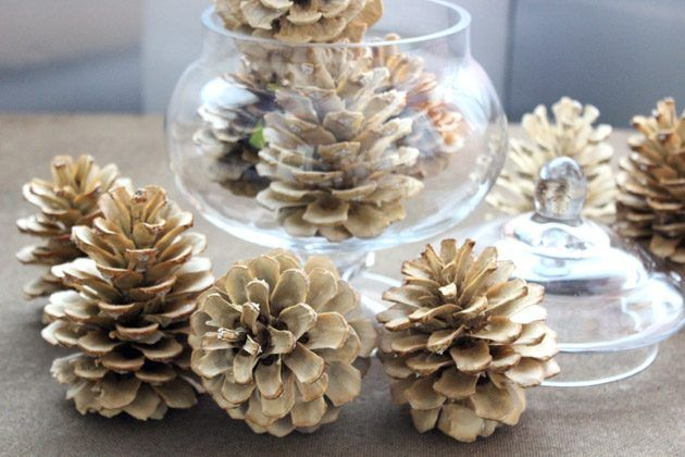 HOW TO BLEACH PINE CONES for a white-washed look! Bleached pine cones can be displayed throughout the year.