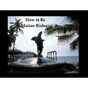 how to be a marine biologist learn about marine biology careers colleges courses and marine biology jobs what is marine biology getting a marine marine biologist job description and salary