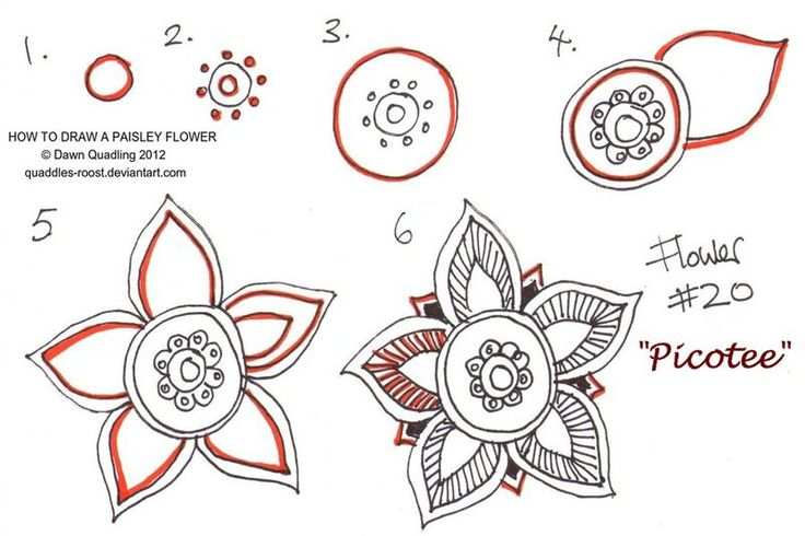 How to draw Paisley Flower 20 Picotee by Quaddles-Roost.deviantart.com on @deviantART