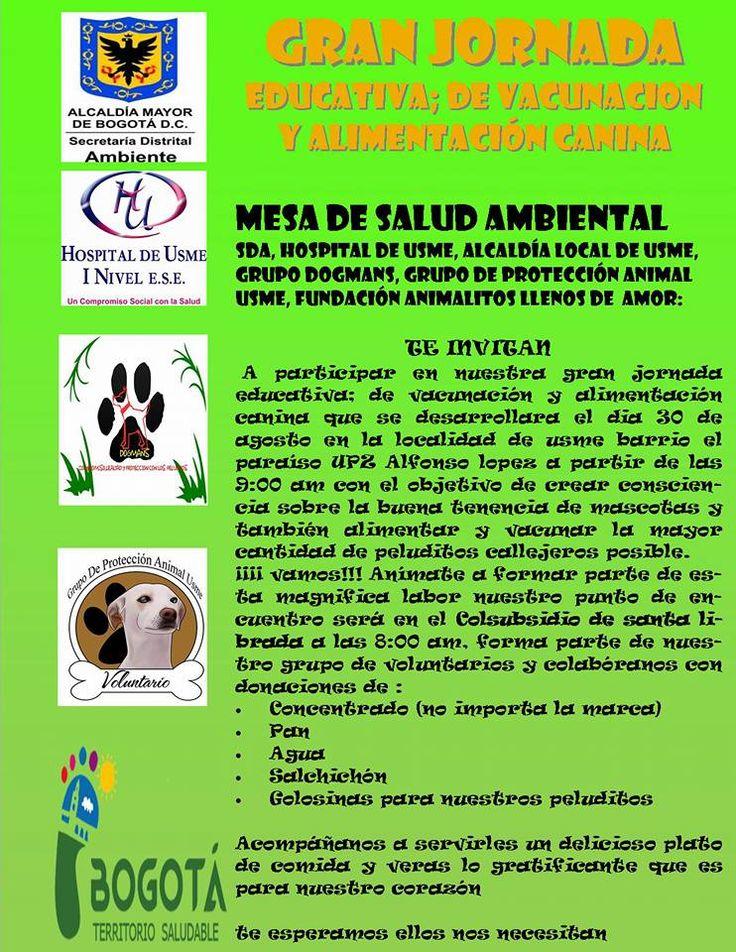 Jornada de educación animal 30 agosto 2015 #Usme #animal #tenenciaresponsable