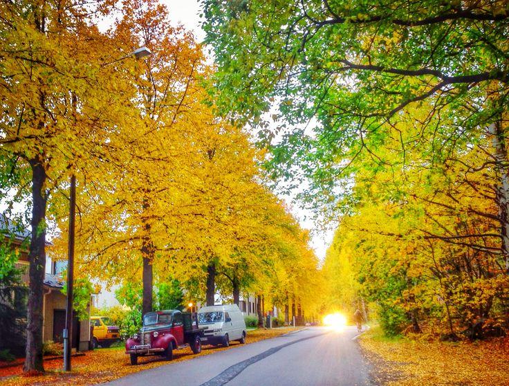 Petsamo area in October, Tampere, Finland
