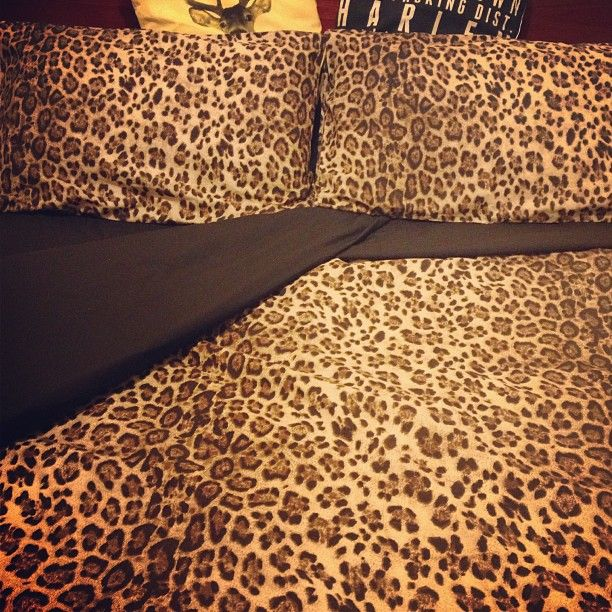 leopard print bedding on pinterest cheetah print bedding leopard