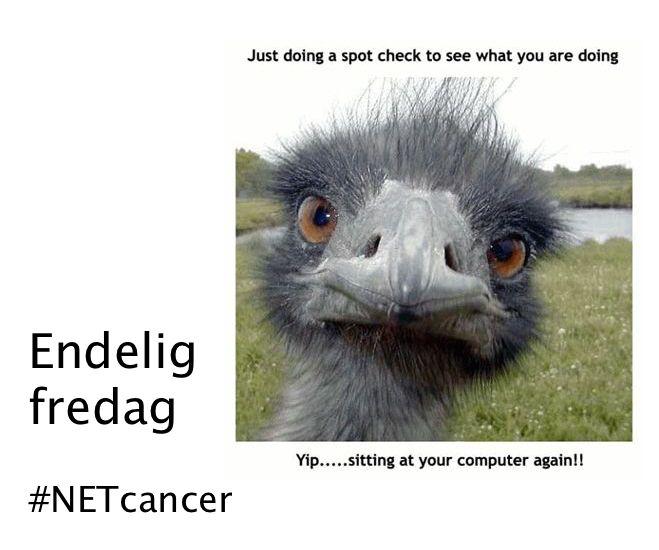 Endelig Fredag #NETcancer
