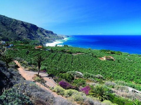 Rambla de Castro, Los Realejos  ✈✈✈ Here is your chance to win a Free International Roundtrip Ticket to La Palma, Spain from anywhere in the world **GIVEAWAY** ✈✈✈ https://thedecisionmoment.com/free-roundtrip-tickets-to-europe-spain-la-palma/
