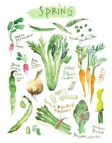 4 Seasons wall art, Set of 4 prints, Vegetable poster set, Watercolor painting, Colorful kitchen decor, Vegan food art, Veggie illustration