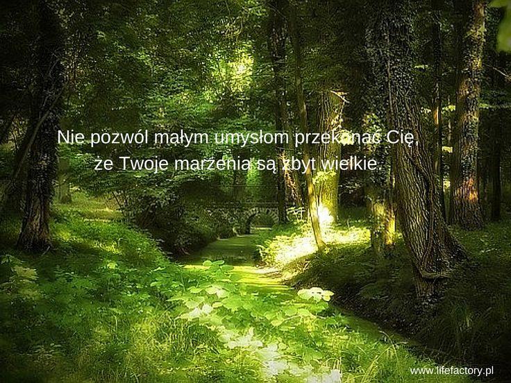 #marzenia, #działanie, #lifefactory