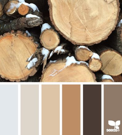 Rustic Tones - http://design-seeds.com/index.php/home/entry/rustic-tones4