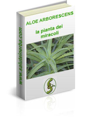 """Scarica l'ebook gratuito """"Aloe Arborescens - la pianta dei miracoli"""""""