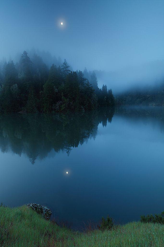 Morning Calm. Phoenix Lake, Mountain Tamalpais, Fairfax, California.