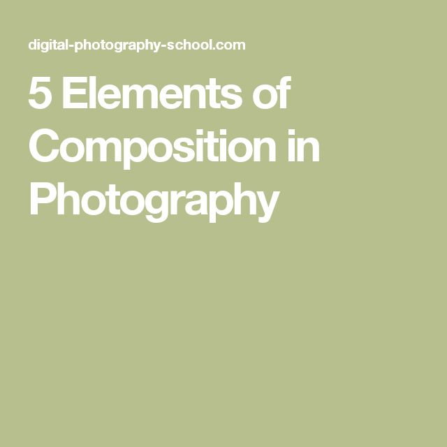 5 Elements of Composition in Photography