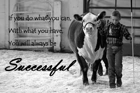 Success is Reason Enough: Why showing cattle matters.