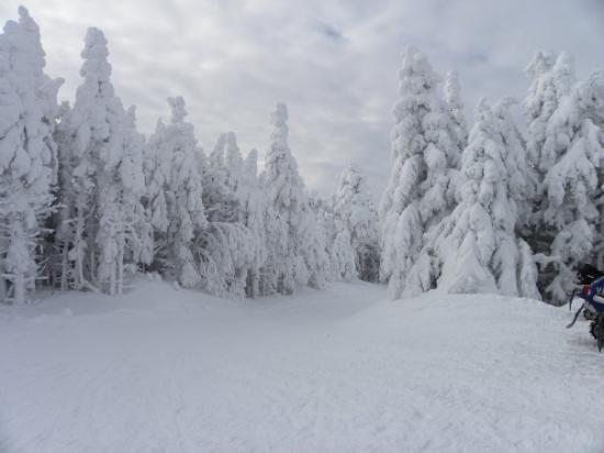 New Hampshire Winter Solstice Pinterest Hampshire