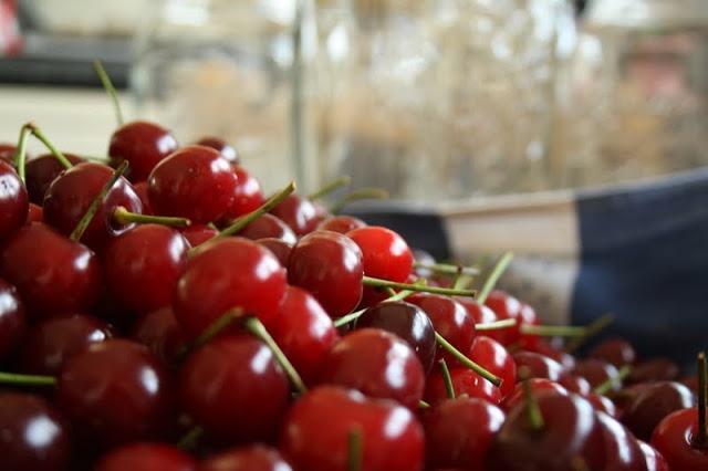 Ginjinha - Morello Cherry