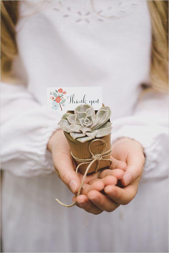 Boho wedding: succulent wedding favors