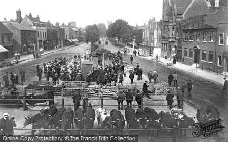 St Albans, the Cattle Market c1910 (loved to visit this market as a child in the 1950's -unfortunately an ugly multi-storey car park now stands on the site).
