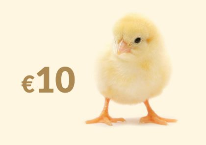 Let's hatch a plan! When you buy a chicken, your €10 donation will be used to provide much needed life resources to vulnerable households in World Vision's ADPs. Click here for more ---> http://www.worldvision.ie/gifts/easter